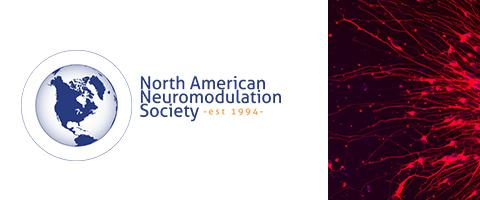 "North Americxan Neuromodulaton Society Logo with crop of ""neurons-emerging-from-a-neurosphere-aditi-deshpande"" photo"