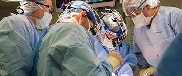 Photo of a liver transplant surgery at UCSF