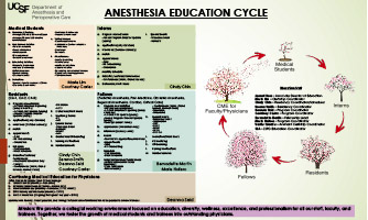 Anesthesia Medical Education Cycle Poster